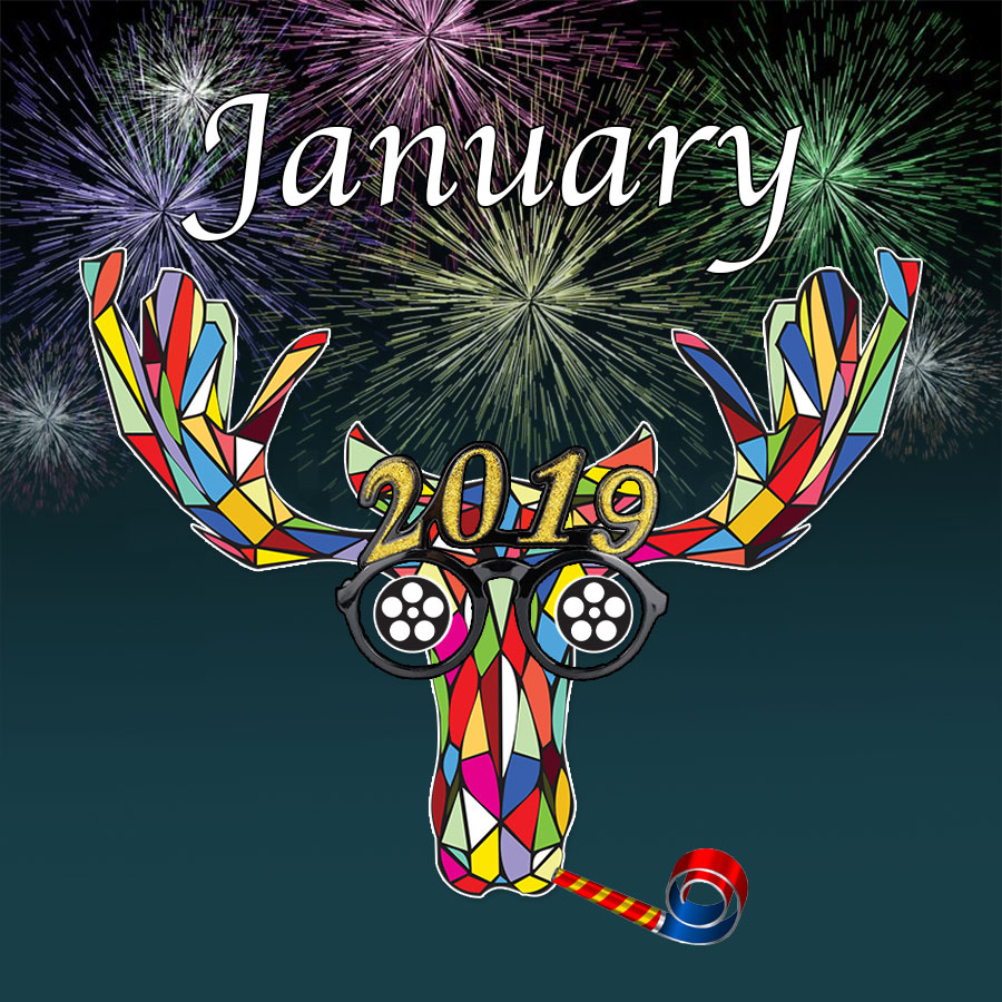 January 2019 Monthly Moose